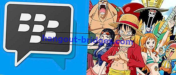 BBM Mod One Piece: Aplikasi Android BBM dengan Tema ONE PIECE