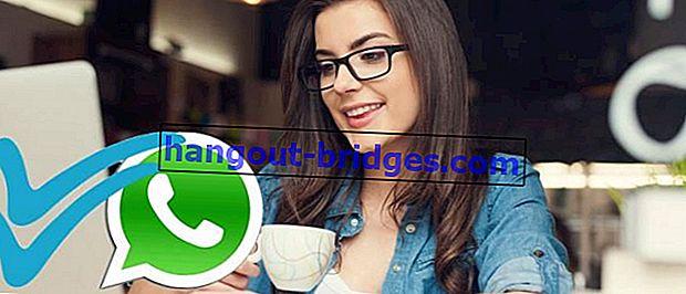 6 Cara Membaca Mesej WhatsApp Tanpa Cek Biru Terlihat