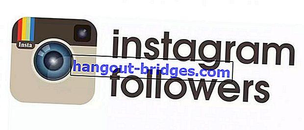 5 astuces pour 1000 abonnés sur Instagram en 1 jour