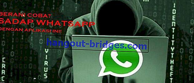 Espace parallèle: application alternative pour exploiter Whatsapp
