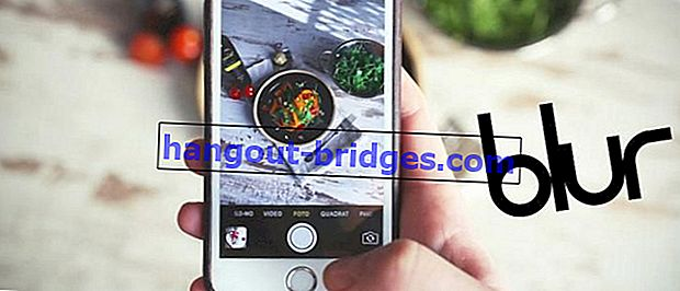 10 Aplikasi Penyuntingan Foto Menjadi Bokeh dan Kabur pada Android, Tidak Perlu Kamera DSLR!