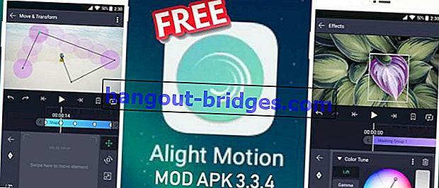 ดาวน์โหลด Alight Motion Pro MOD APK 3.3.4 | ฟรีและไม่มีลายน้ำ!