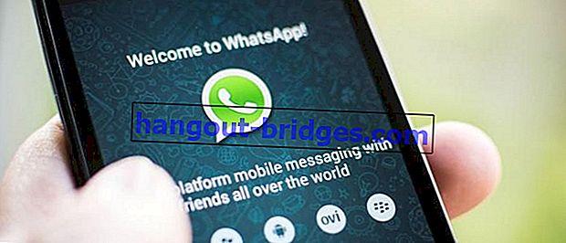 Mengapa WhatsApp Tidak Dapat Panggilan Video? Inilah Cara Mengatasinya